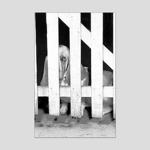 Lonely Basset Mini Poster Print