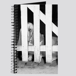Lonely Basset Journal