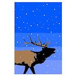 Winter Bugling Elk Large Poster