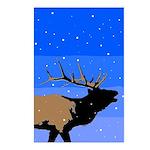 Winter Bugling Elk Postcards (Package of 8)