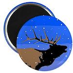 Winter Bugling Elk Magnet
