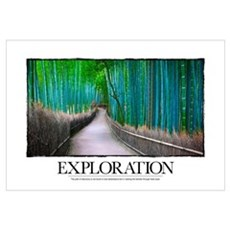 Inspirational Poster: The path of discovery is not Framed Print