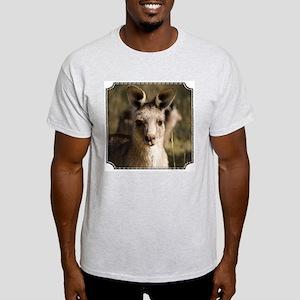 Kangaroo Ash Grey T-Shirt