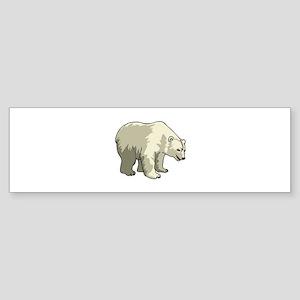 Polar Bear Sticker (Bumper)