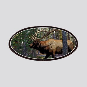 Bull Elk 4 Patches