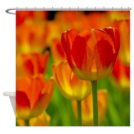 Orange Tulip Shower Curtain By Caitlin