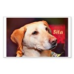 Sita Sticker (Rectangle 50 pk)