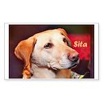 Sita Sticker (Rectangle 50 pk)