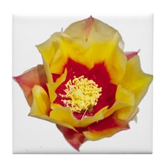 Prickly Pear Flower Tile Coaster