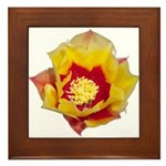Prickly Pear Flower Framed Tile