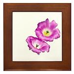 2 Pink Cactus Flowers Framed Tile