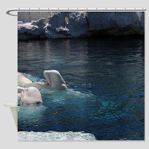 Beluga Whales Shower Curtain