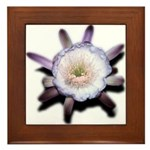 Monster Flower Framed Tile