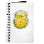 2 YELLOW BARREL CACTUS FLOWERS Journal