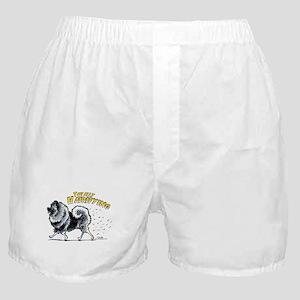 Keeshond Hairifying Boxer Shorts