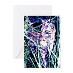 Colorful Cat Greeting Cards (Pk of 10)