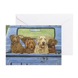 Cbrs Greeting Cards (10 Pack)