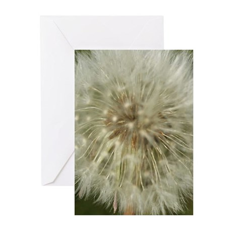 Make A Wish Greeting Cards (Pk of 20)
