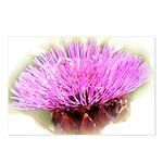 Artichoke Flower Postcards (Package of 8)