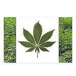 Legalize Marijuana Cannabis Flag Postcards (Packag