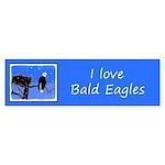 Winter Bald Eagle Sticker (Bumper 10 pk)