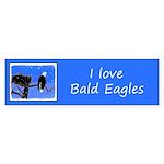 Winter Bald Eagle Sticker (Bumper 50 pk)