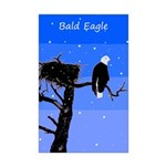 Winter Bald Eagle Mini Poster Print