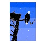 Winter Bald Eagle Postcards (Package of 8)