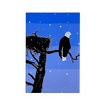 Winter Bald Eagle Rectangle Magnet