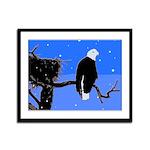 Winter Bald Eagle Framed Panel Print