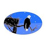 Winter Bald Eagle Oval Car Magnet