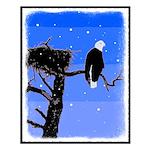 Winter Bald Eagle Small Poster