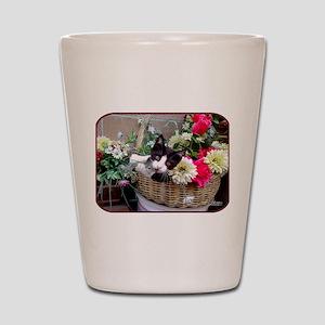 Kitten in a Basket Shot Glass