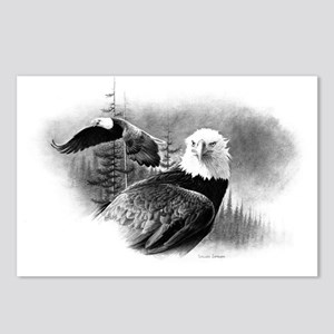 Eagles Postcards (Package of 8)