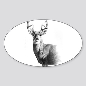 Whitetail Sticker (Oval)