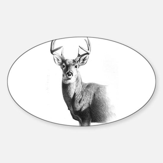 Whitetail Sticker (Oval)