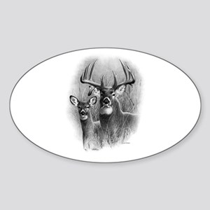 Big Buck Sticker (Oval)