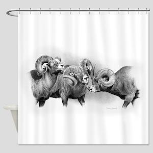 Rams Shower Curtain