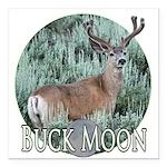 Buck moon Square Car Magnet 3