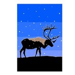 Winter Caribou Postcards (Package of 8)