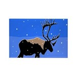 Winter Caribou Rectangle Magnet