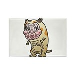 Grandma cat Rectangle Magnet (10 pack)