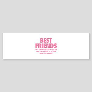 Best Friends Sticker (Bumper)