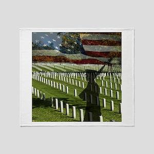 Guard at Arlington National Cemetery Stadium Blan