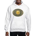 Indian gold oval 2 Hooded Sweatshirt