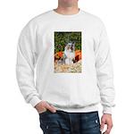 Vintage Santa and Sheltie Sweatshirt