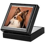 Sheltie Shetland Sheepdog Keepsake Box