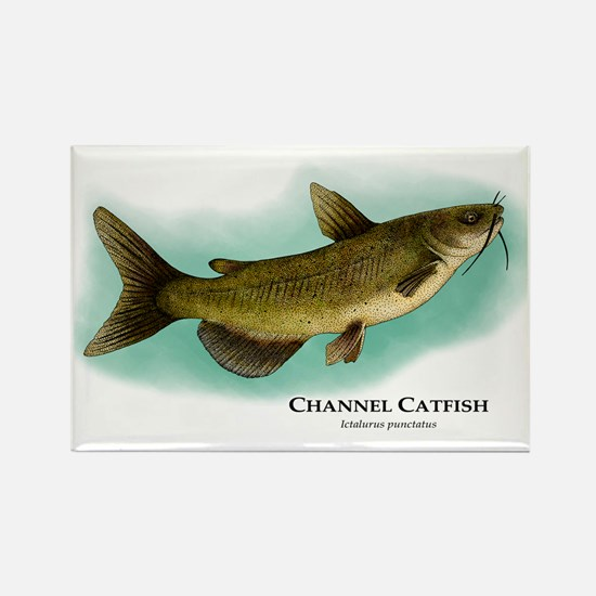 Channel Catfish Rectangle Magnet