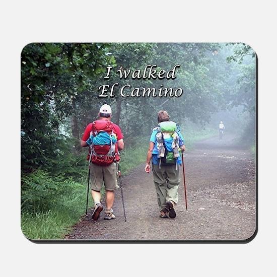 I walked El Camino, Spain, walkers 3 Mousepad