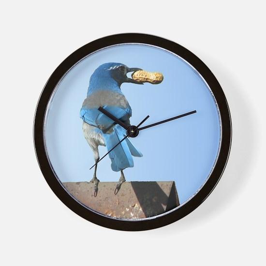 Cute Bluebird with Peanut Wall Clock
